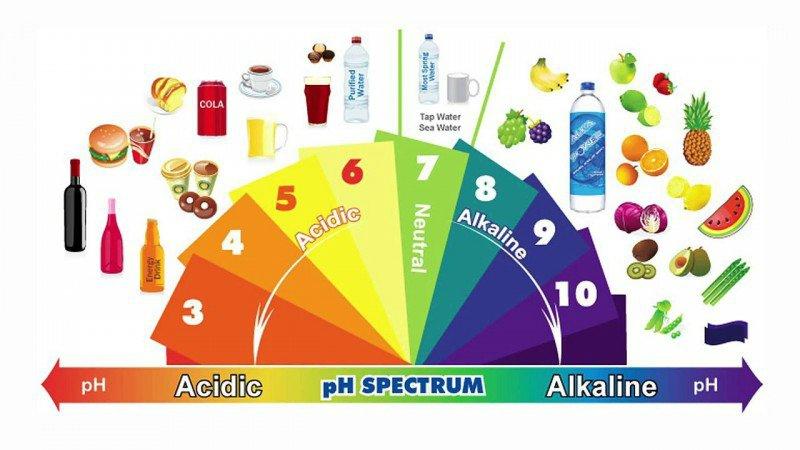 alimentation acidobasique