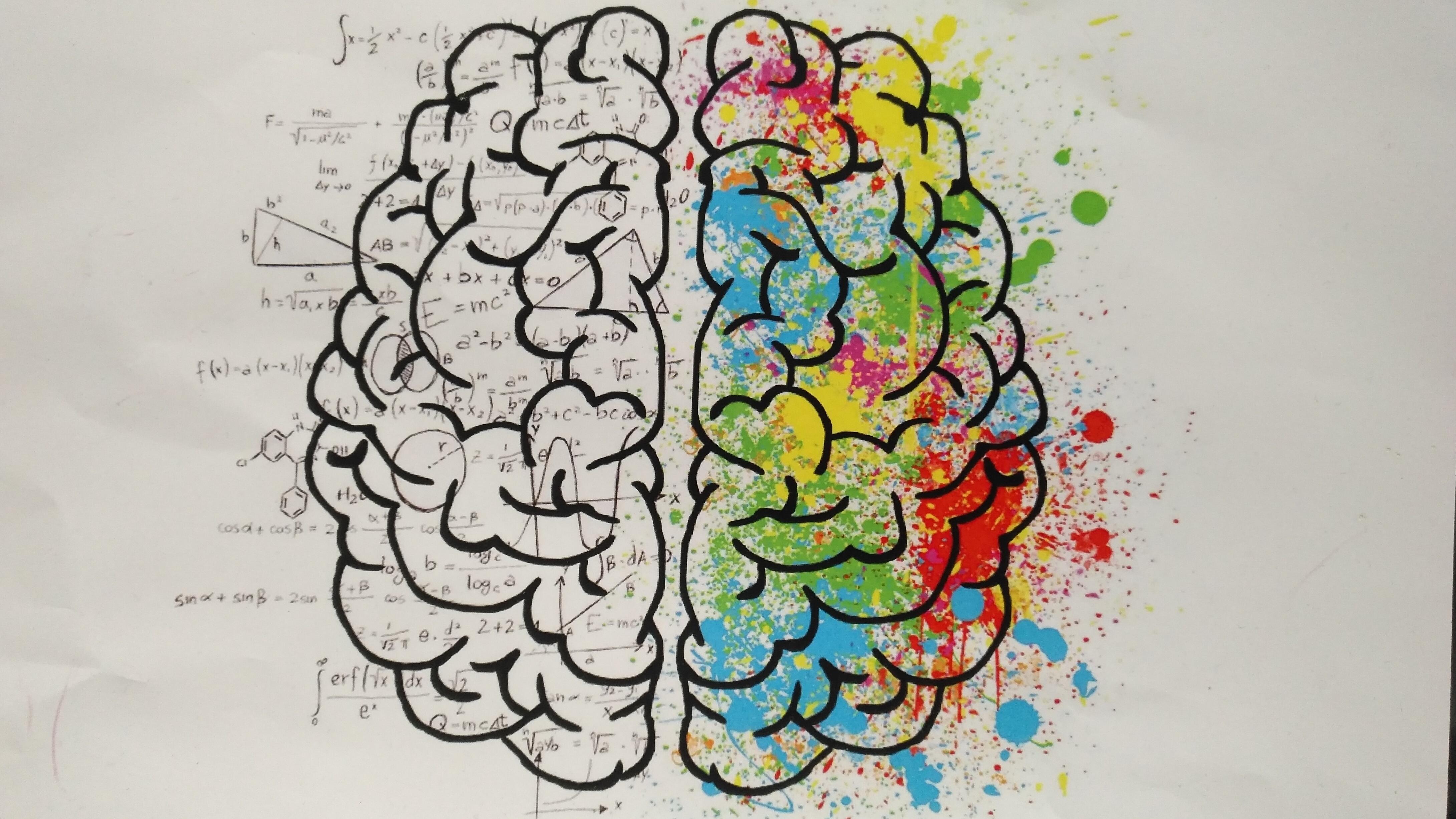 hémisphères droits 9 types d'intelligence