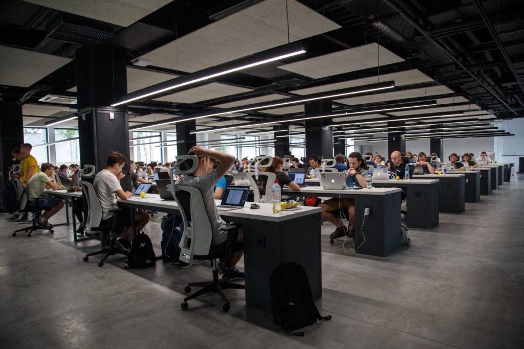 hypersensibilité des zèbres au travail et le cauchemar de l'open space
