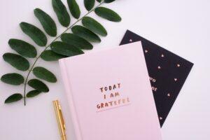 gratitude et entreprendre