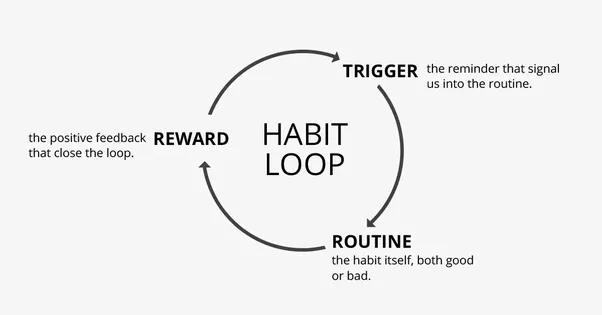 comment se forment les habitudes